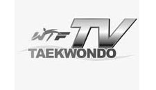 Dartfish TKD TV