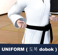 Toeboek the pronunciation under Korean grammar rules, is the uniform worn by practitioners of Korean Martial Arts. Do means way and bok means clothing