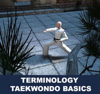 In taekwondo, Korean language commands are often used