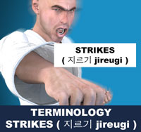 strikes (jireugi)