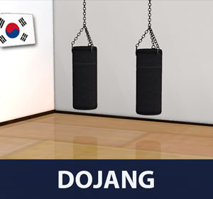 Dojang is a term used in Korean martial arts, such as taekwondo, Kuk Sool Won, and hapkido, that refers to a formal training hall