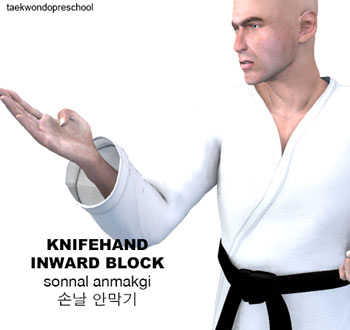 Knife-Hand Inward Block ( 손날 안막기 sonnal an makgi )