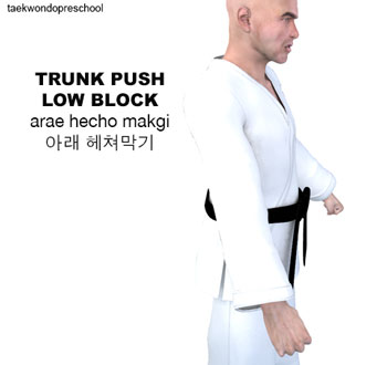 Trunk Push Low Block ( 아래 헤쳐막기 arae hecho makgi )