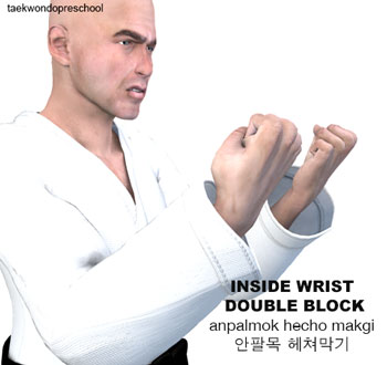 Inside Wrist Double Block ( 안팔목 헤쳐막기 anpalmok hecho makgi )