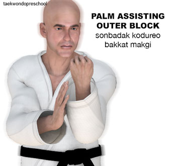 PALM ASSISTING OUTER BLOCKK