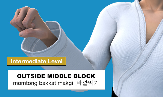 Outside Middle Block ( 바깥막기 momtong bakkat makgi )