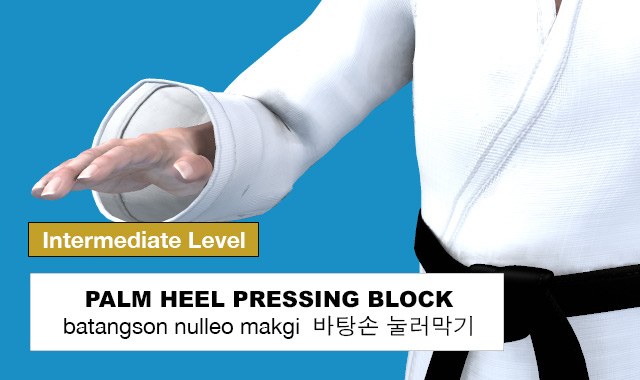Palm Heel Pressing Block ( 바탕손 눌러막기 batangson nulleo makgi )
