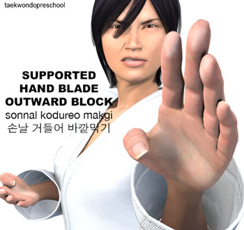 Supported Hand Blade Outward Block