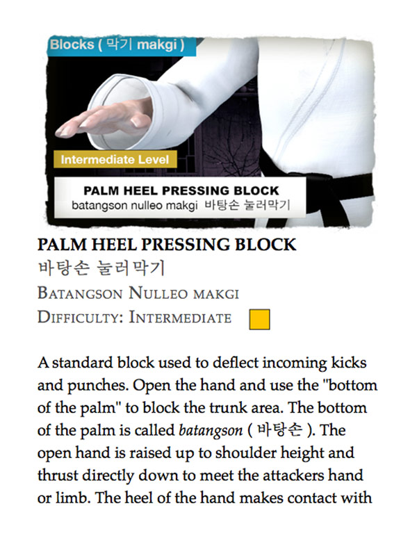 Blocking ( 막기 makgi ) - Taekwondo Preschool iBook version