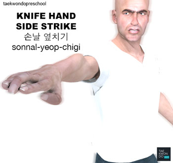 Hand Blade Side Strike ( 손날 옆치기 sonnal-yeop-chigi )