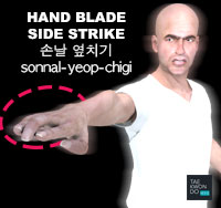 Hand Blade Side Strike