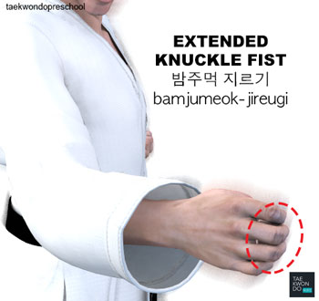 Extended Knuckle Fist ( 밤주먹 지르기 bamjumeok-jireugi )
