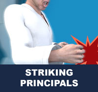 Taekwondo Striking Principals
