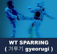 World Taekwondo Federation Sparring