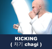 A kick is a physical strike using the foot, leg, or knee