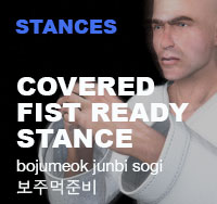 Taekwondo Cover Fist Ready Stance