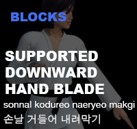 Taekwondo Low Double Knife Hand