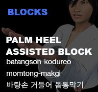 Taekwondo Palm Hand Assisted Block