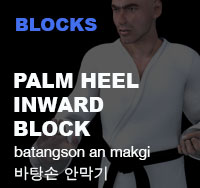 Taekwondo Palm Hand Trunk Block