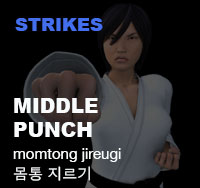 Taekwondo Middle Punch