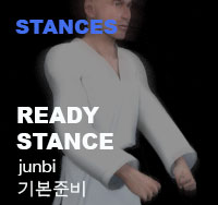 Ready stance