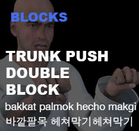 Taekwondo Trunk Push Middle Block