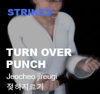 Taekwondo Turn Over Punch (Jeocheo-jireugi)