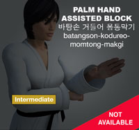 Palm Hand Assisted