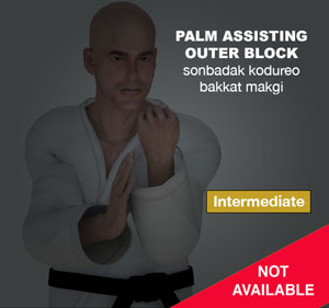 Palm Assisting Outer Block