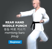 Rear Hand Punch