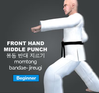 Front Hand Punch